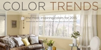 Collor Trends 2013